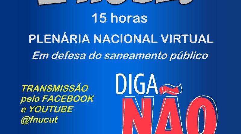 FNU plenaria virtual 22